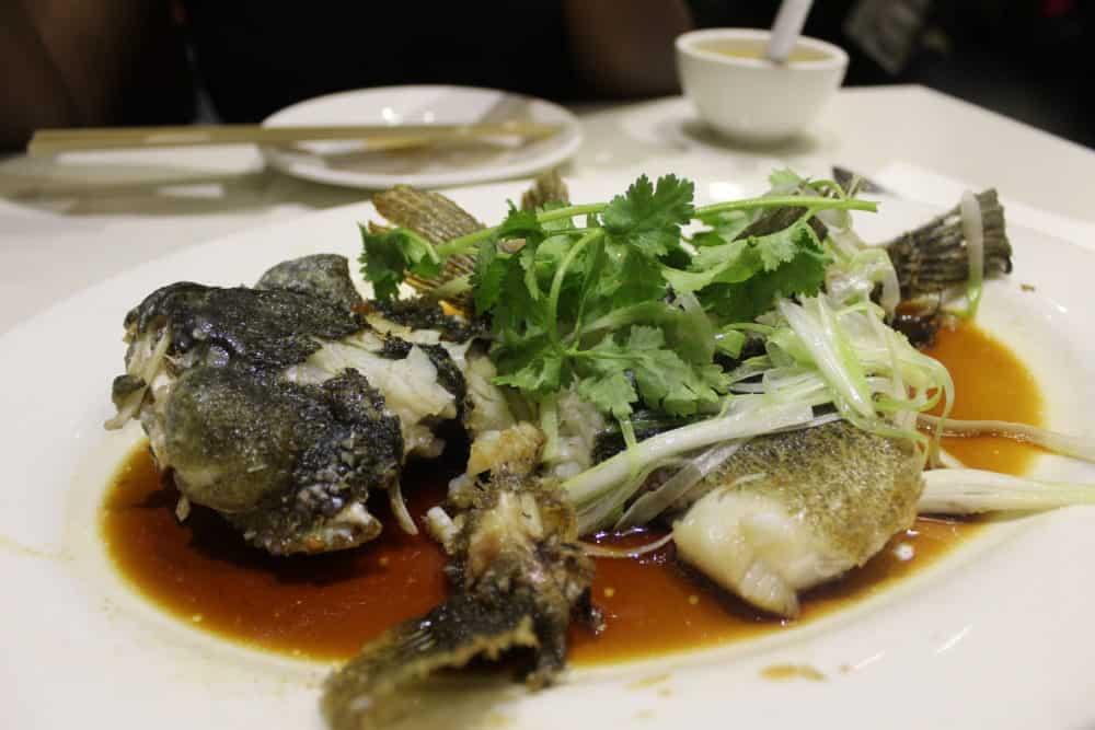 Steam Trout @ Bite of Hong Kong